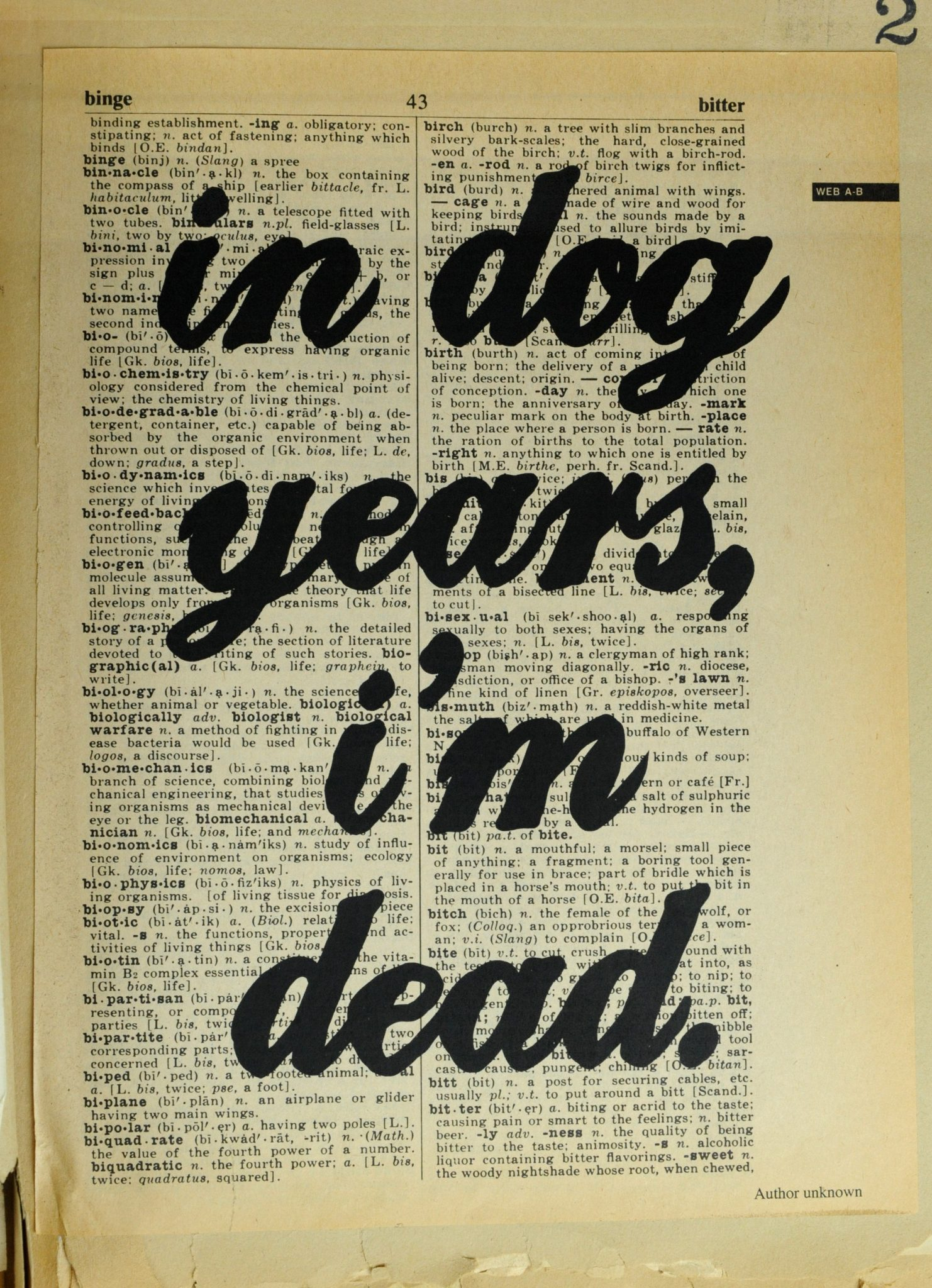 Dictionary Page Print - In dog years, I'm dead.