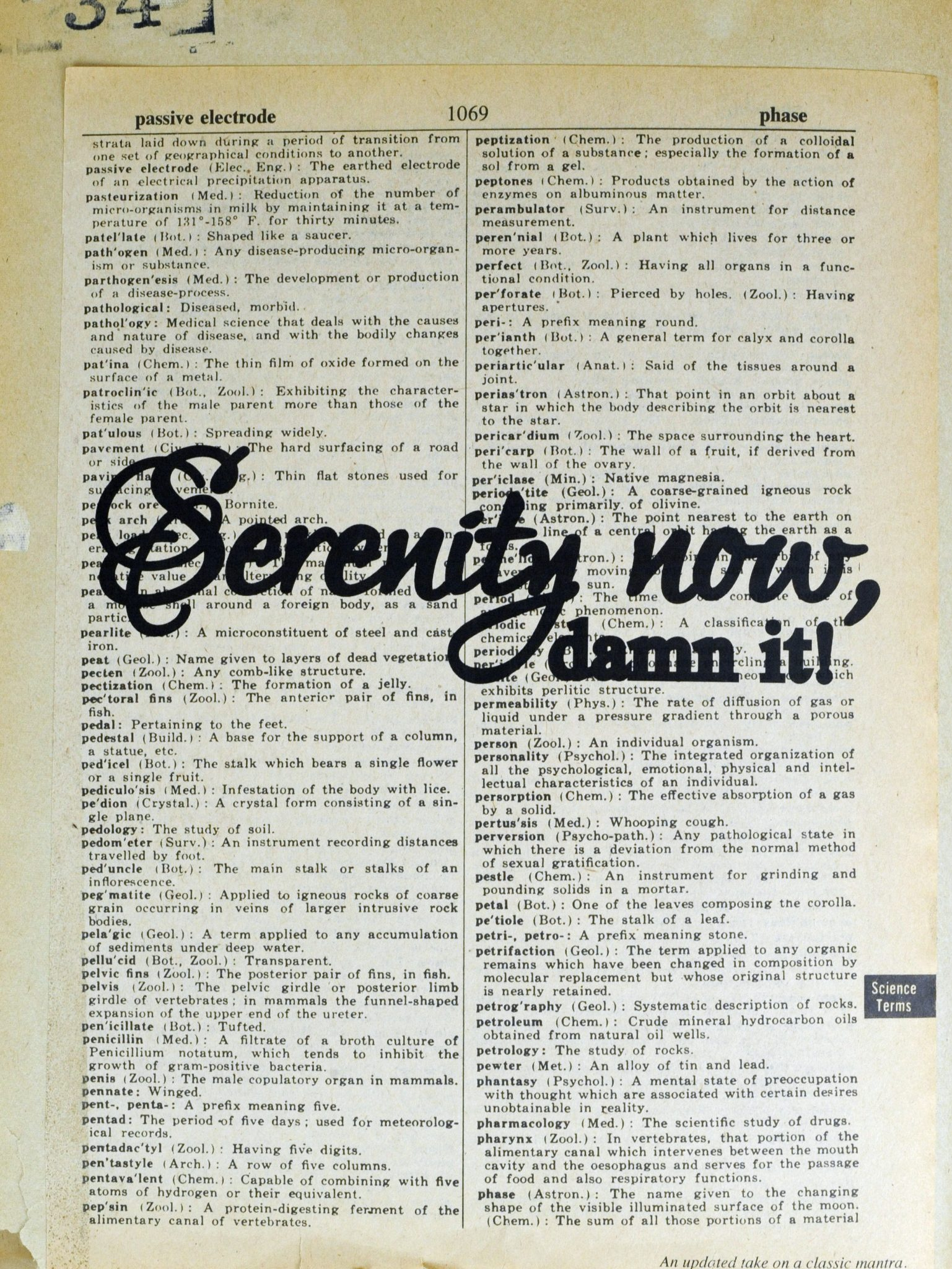 Dictionary Page Print - Serenity Now