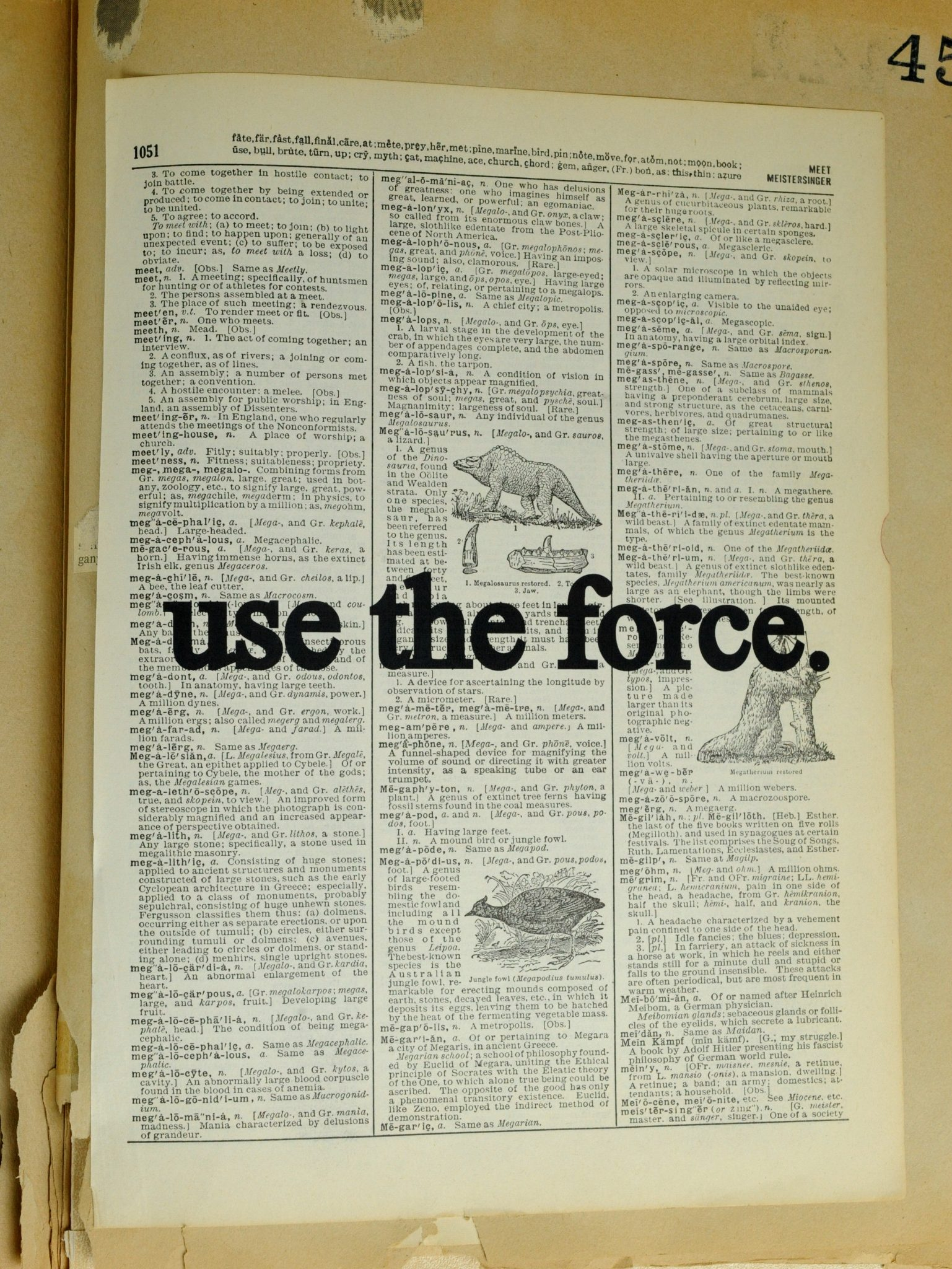Dictionary Page Print - Use the force.